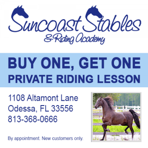 Suncoast Stables BOGO